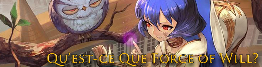what is force of will banner